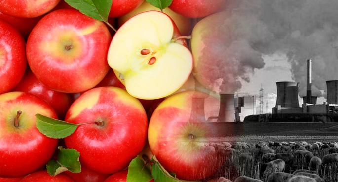 manzanas rojas cambio climatico