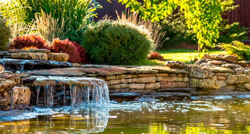 El diseñador de jardines garantiza un trabajo de alta calidad