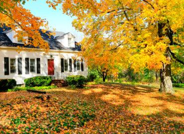 ¿Por qué reformar tu casa en otoño?