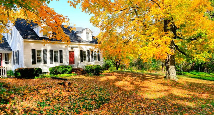 Por qué renovar tu casa en otoño